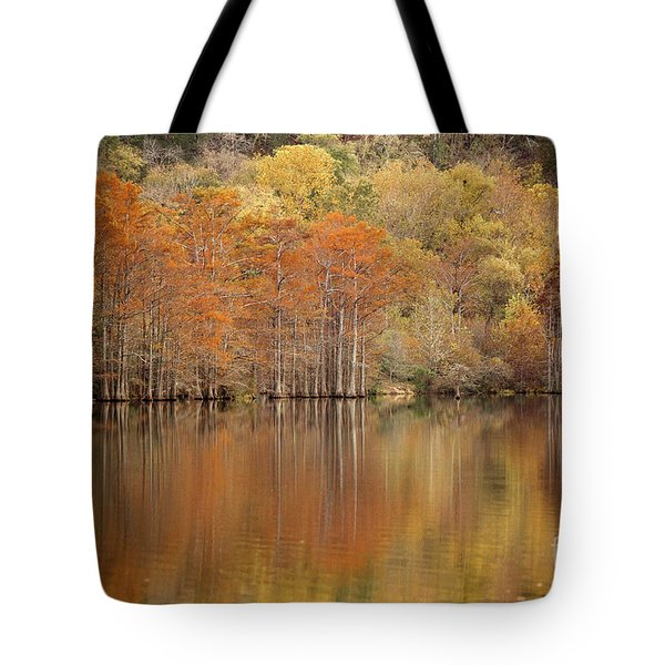 Orange Pool Tote Bag