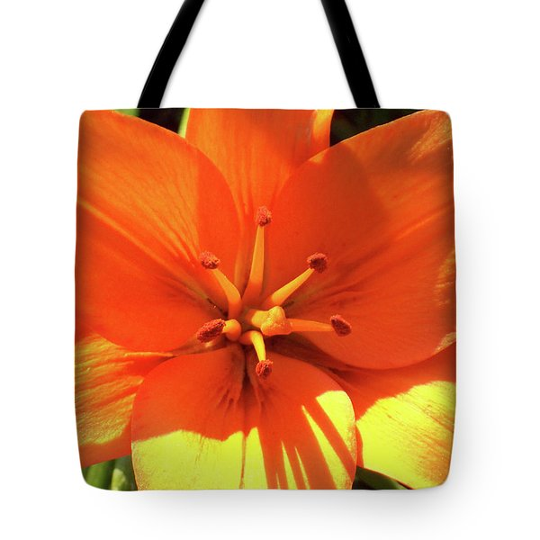 Orange Pop Tote Bag