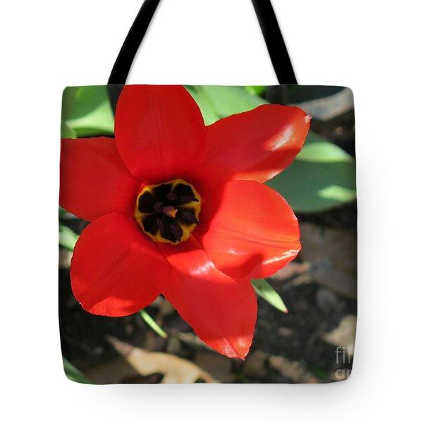 Orange Red Flower Tote Bag