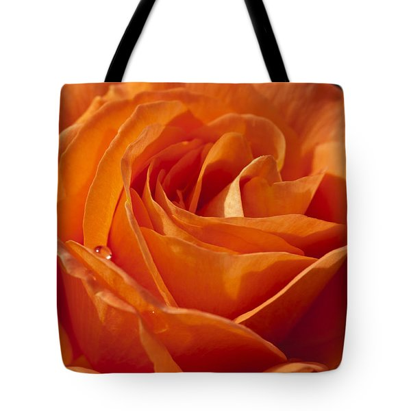 Orange Rose 2 Tote Bag