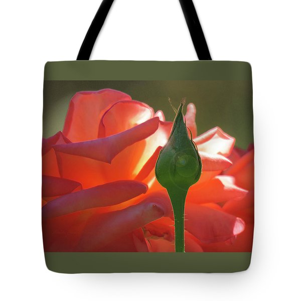 Serenity - Orange Rose And Bud - Photography - Floral Tote Bag