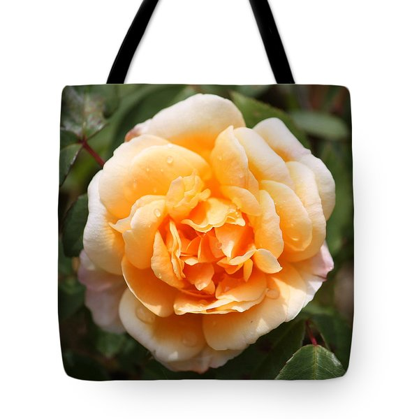 Orange Rose Square Tote Bag by Carol Groenen
