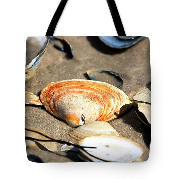 Tote Bag featuring the photograph Orange Seashell by John Rizzuto