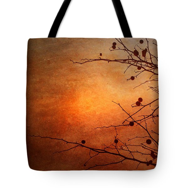 Orange Simplicity Tote Bag by Tara Turner