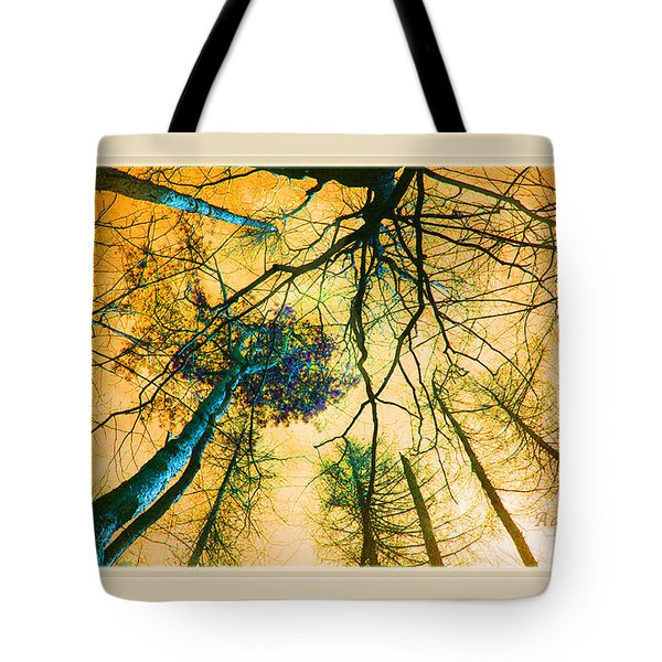 Tote Bag featuring the photograph Orange Sky Tree Tops by Felipe Adan Lerma