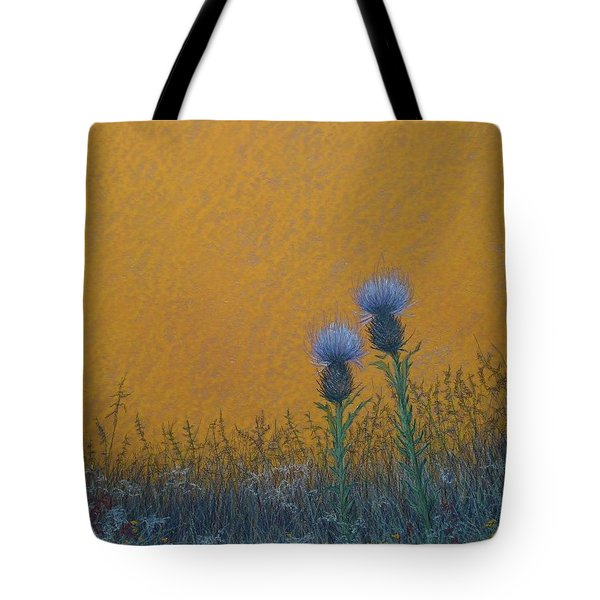 Orange Sky With Thistle Tote Bag