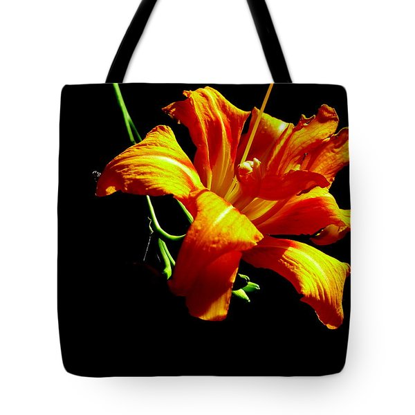 Orange Splendor Tote Bag