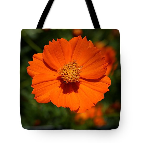Orange Sulfur Cosmos Flower Tote Bag