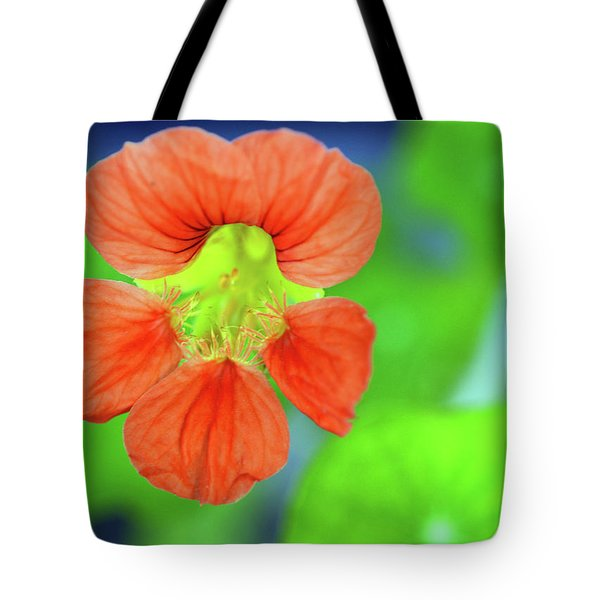 Orange Surprise Tote Bag