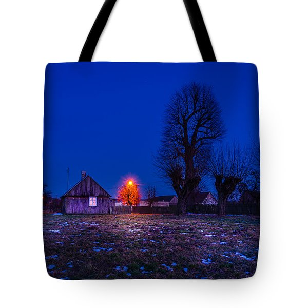 Tote Bag featuring the photograph Orange Tree by Dmytro Korol