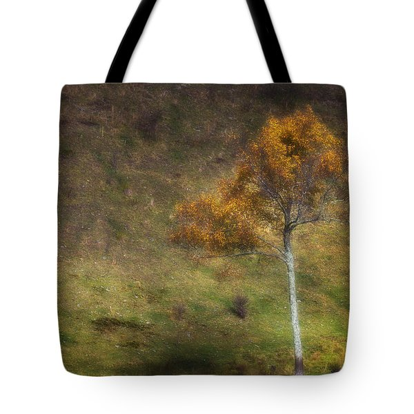 Tote Bag featuring the photograph Orange Tree by Ken Barrett