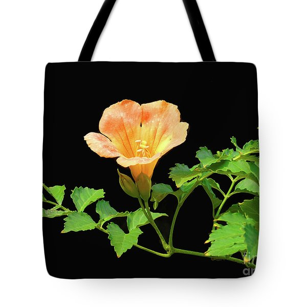 Orange Trumpet Flower Tote Bag