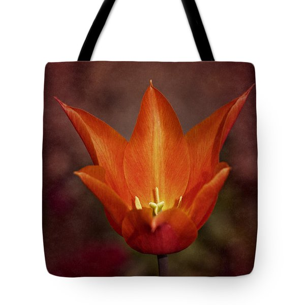 Tote Bag featuring the photograph Orange Tulip by Richard Cummings