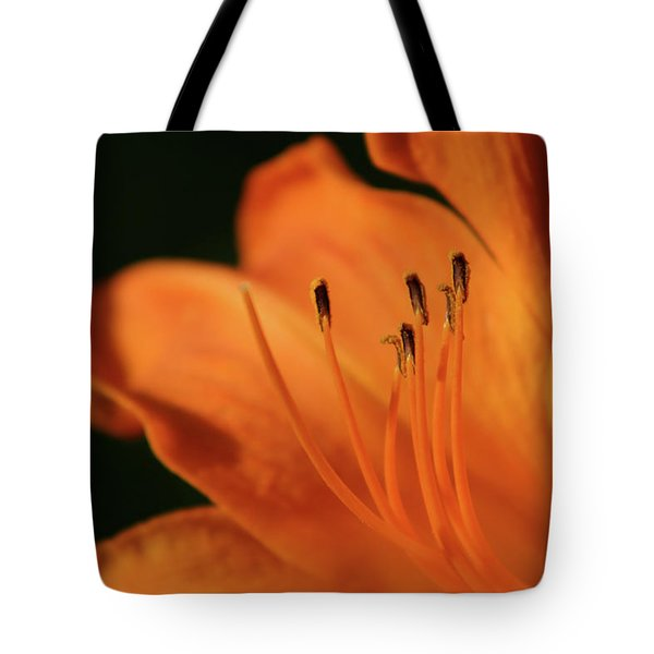 Orange Wave 3096 H_2 Tote Bag