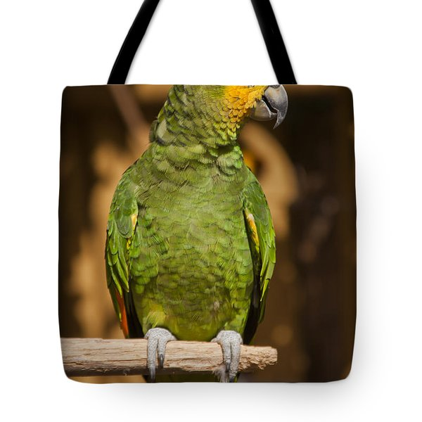 Orange-winged Amazon Parrot Tote Bag