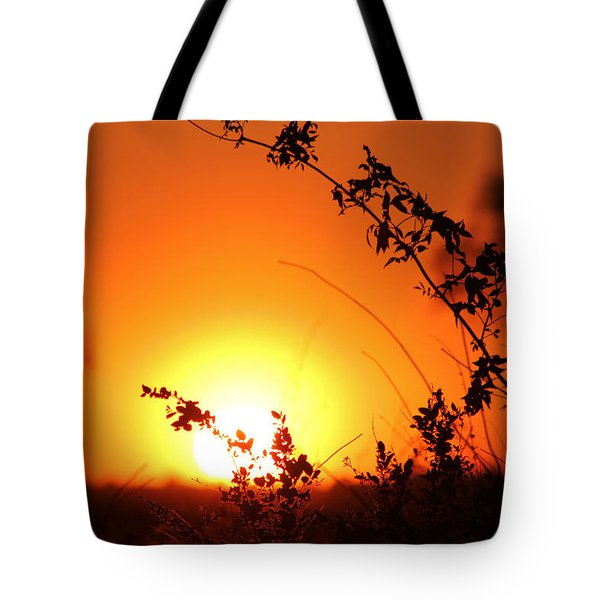 Orange Wonder Tote Bag
