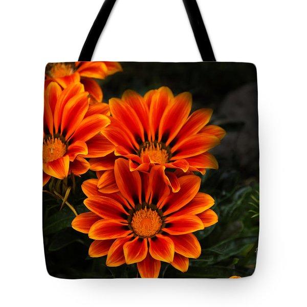Orange You Glad II Tote Bag