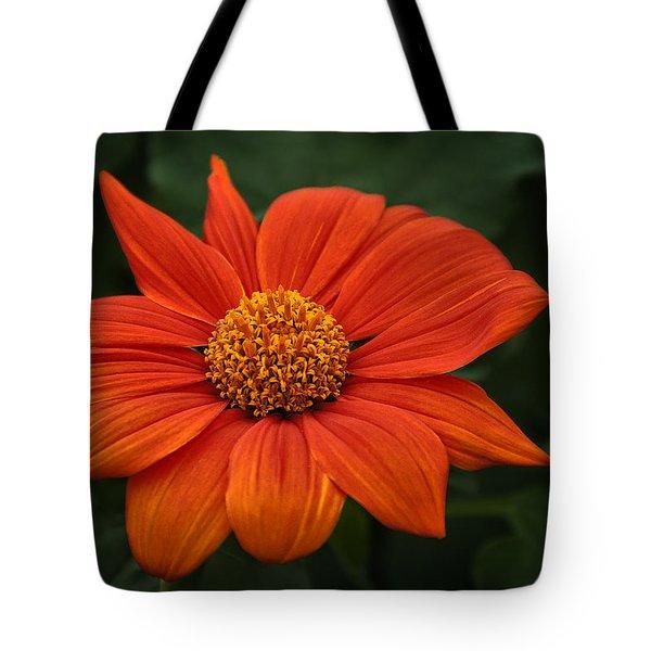 Orange You Pretty Tote Bag