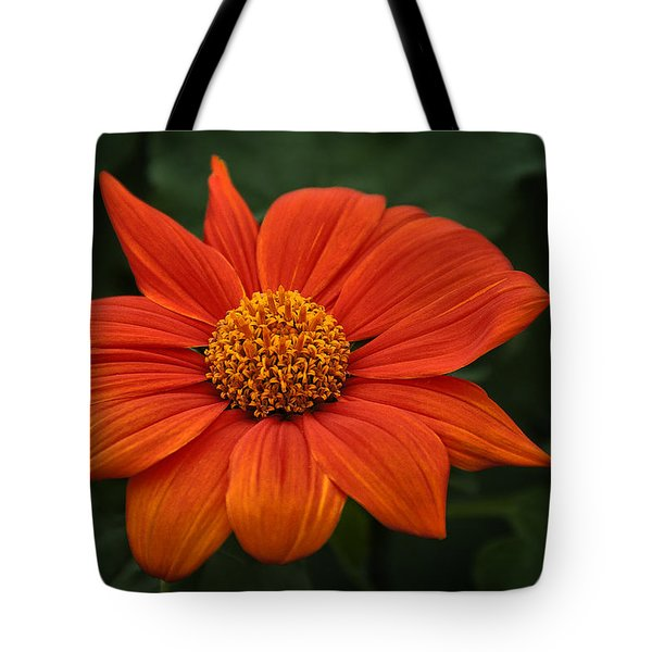 Orange You Pretty Tote Bag