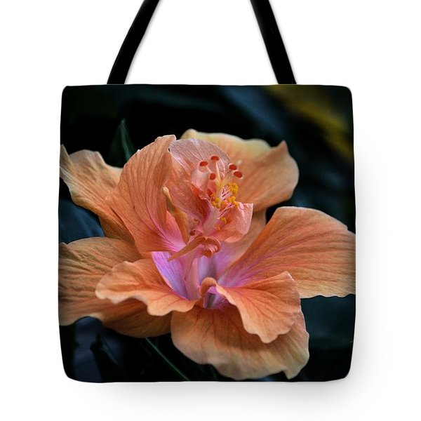Orangecicle Tote Bag