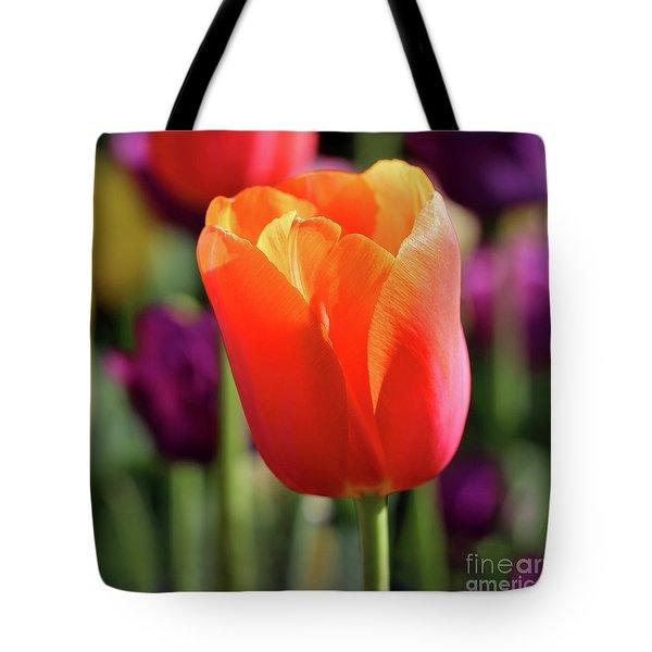 Orange Tulip Square Tote Bag