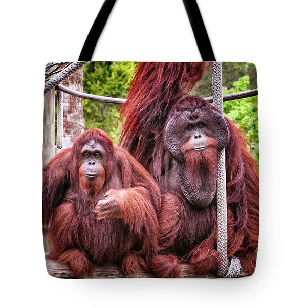 Orangutan Couple Tote Bag by Stephanie Hayes