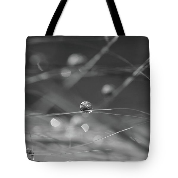 Tote Bag featuring the photograph Orbit  by Connie Handscomb