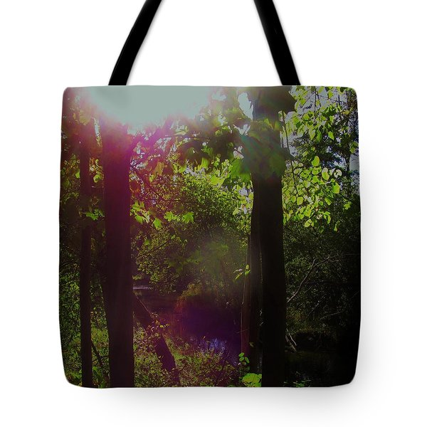 Orbs In The Forest Tote Bag