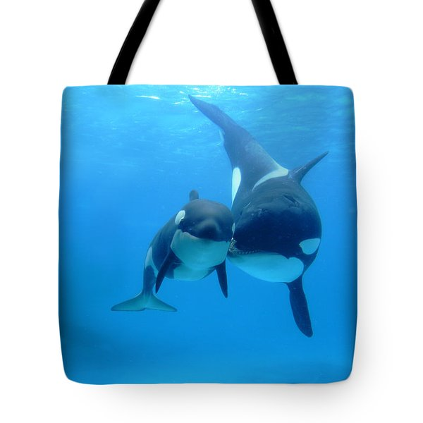 Tote Bag featuring the photograph Orca Orcinus Orca Mother And Newborn by Hiroya Minakuchi