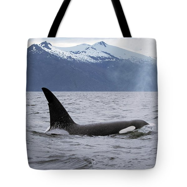 Orca Orcinus Orca Surfacing Tote Bag by Konrad Wothe