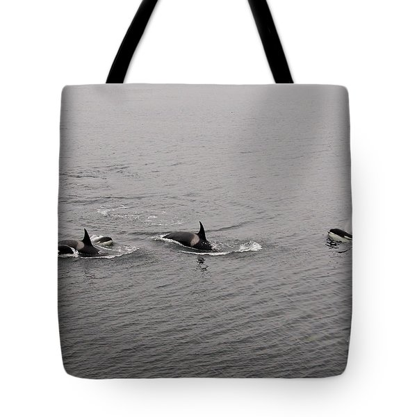 Orca Pod Tote Bag by Sean Griffin