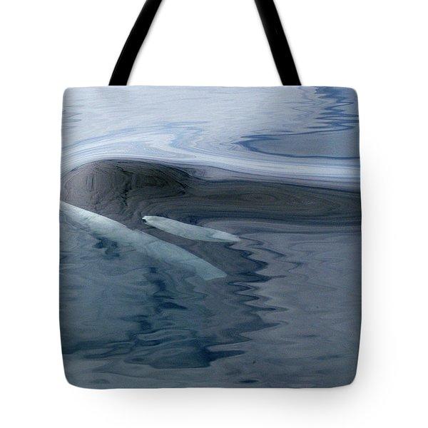 Orca Surfacing Southeast Alaska Tote Bag by Flip Nicklin