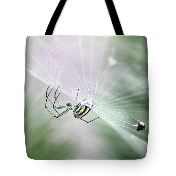 Tote Bag featuring the photograph Orchard Orbweaver Spider  by Trina Ansel
