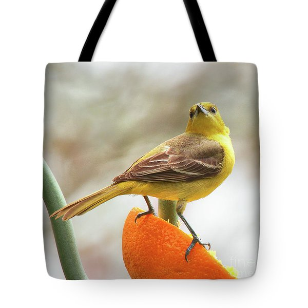 Tote Bag featuring the photograph Orchard Oriole by Debbie Stahre