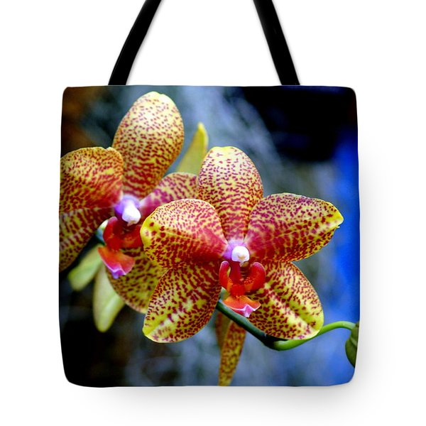 Orchid 17 Tote Bag by Marty Koch