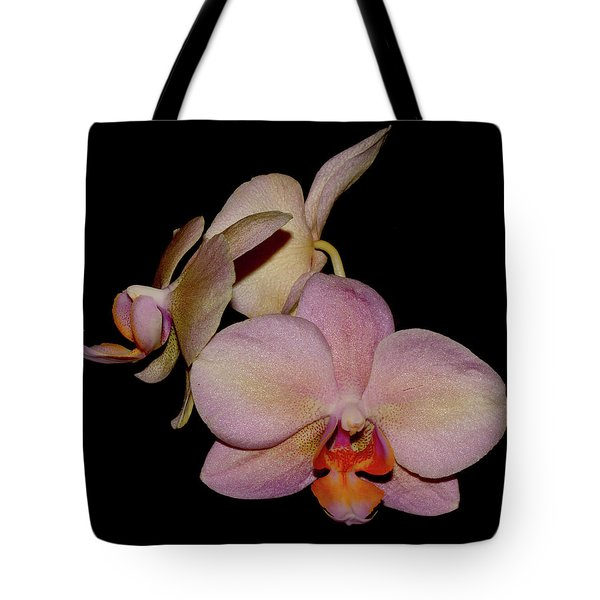 Orchid 2016 1 Tote Bag by Robert Morin