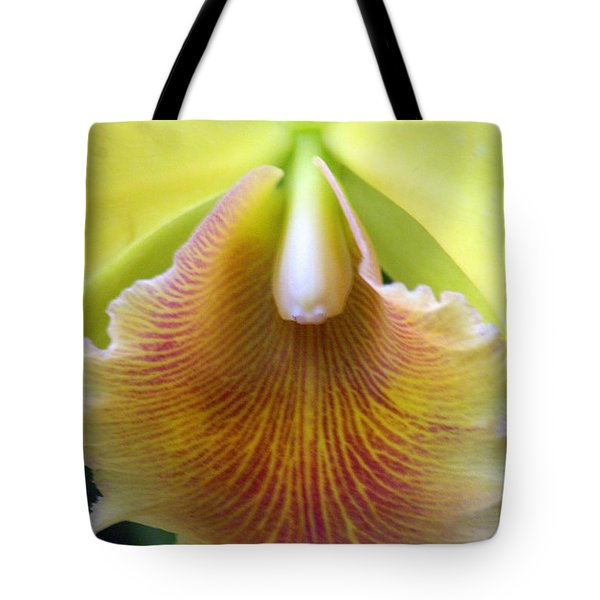 Orchid 21 Tote Bag by Marty Koch
