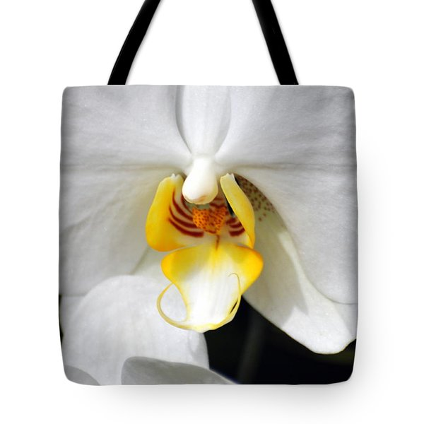 Orchid 23 Tote Bag by Marty Koch