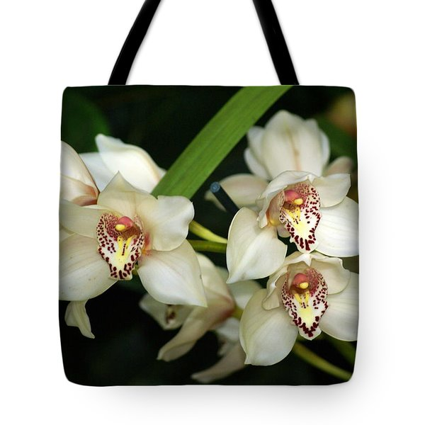 Orchid 3 Tote Bag by Marty Koch