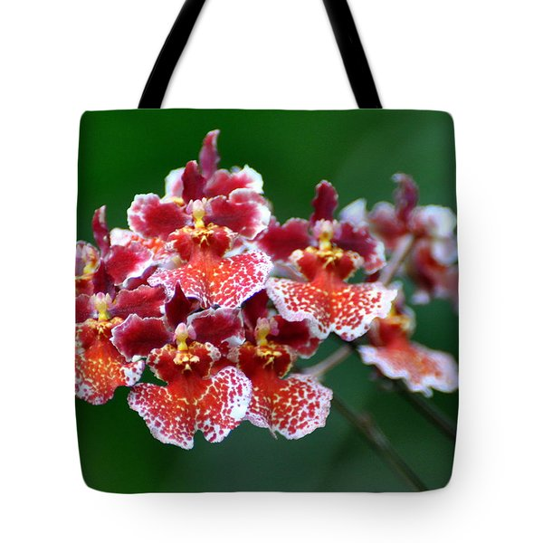 Orchid 31 Tote Bag by Marty Koch
