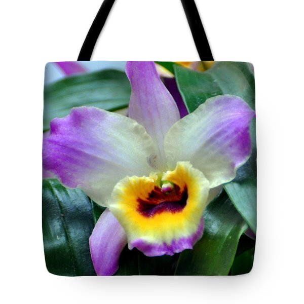 Orchid 34 Tote Bag by Marty Koch