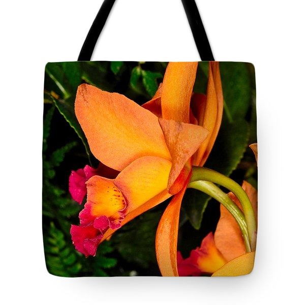 Orchid 355 Tote Bag