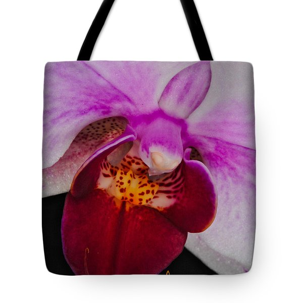 Orchid 376 Tote Bag