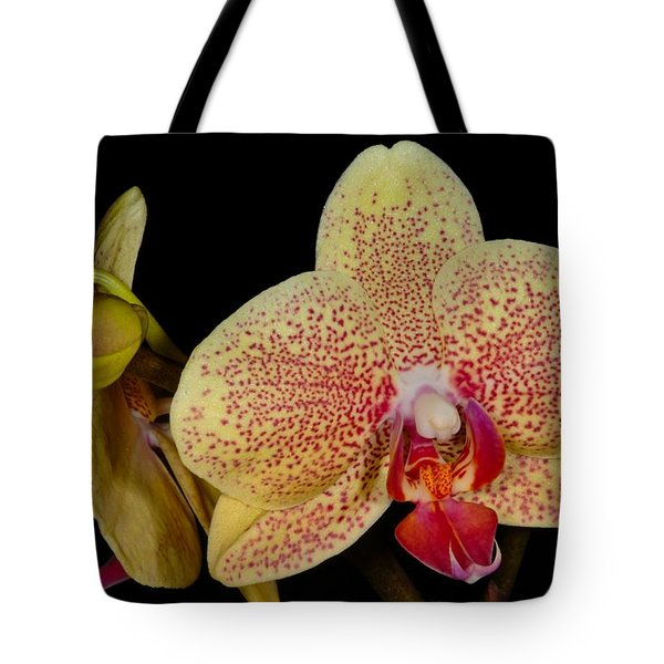 Orchid 377 Tote Bag