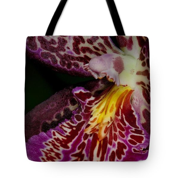 Orchid 459 Tote Bag