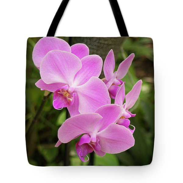 Orchid #6 Tote Bag