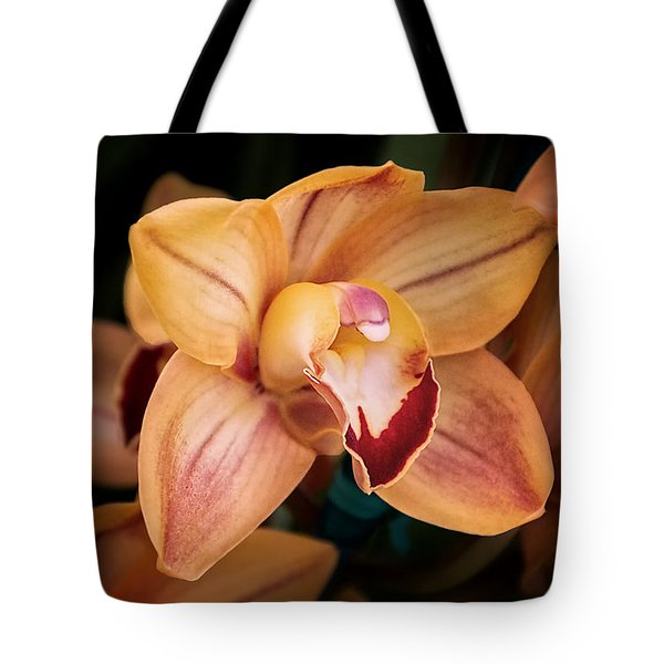 Orchid - A Quiet Elegance Tote Bag by Tom Mc Nemar