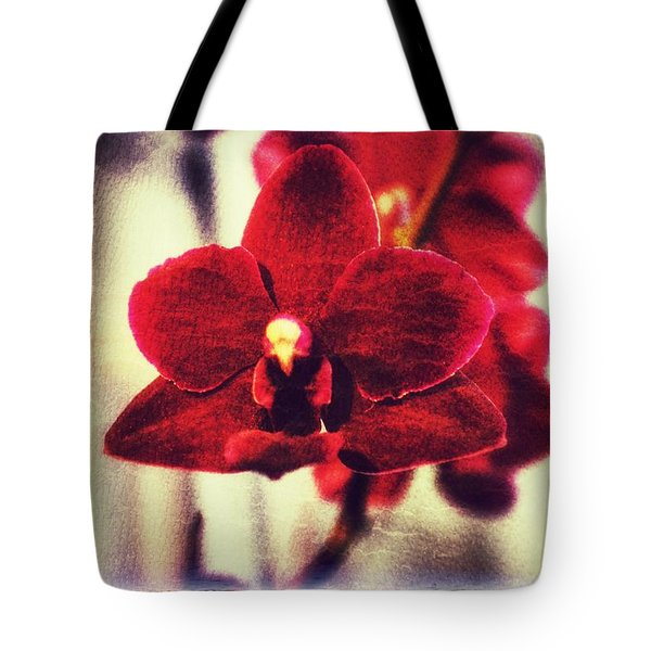 Tote Bag featuring the photograph Orchid Alone by Isabella F Abbie Shores FRSA