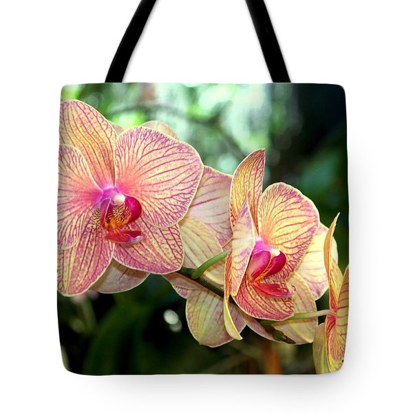 Orchid Delight Tote Bag by Karen Wiles