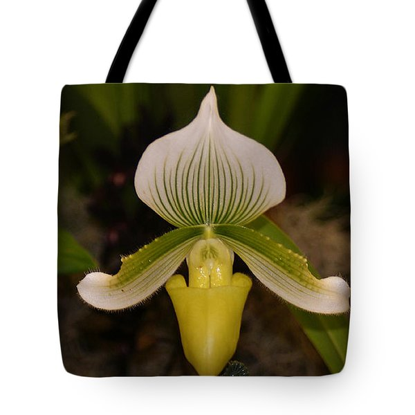 Orchid Flower 42 Tote Bag